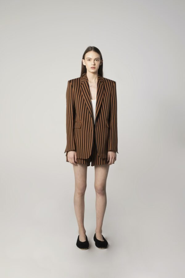 Single-breasted Tux Jacket in Black and Brown Stripes Print
